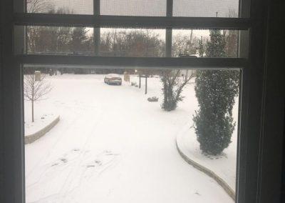 Lainey Serene window
